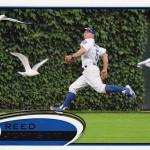 2012reedbirds