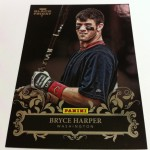 panini-america-2012-black-friday-insert-25