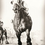 2013-golden-age-baseball-seabiscuit