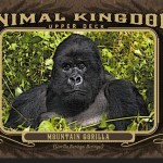 animalkingdomgoodwin