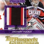 13HP-TP_Fucale_patch