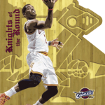 2013-14-panini-basketball-kyrie-knights