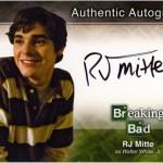 bb_auto_a3_-_rj_mitte_a (1)