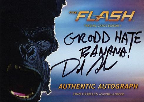 2016 The Flash Season 1 Autographs David Sobolov