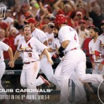 336 St. Louis Cardinals