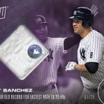 509 Gary Sanchez Relic /25