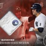 509 Gary Sanchez Relic /10