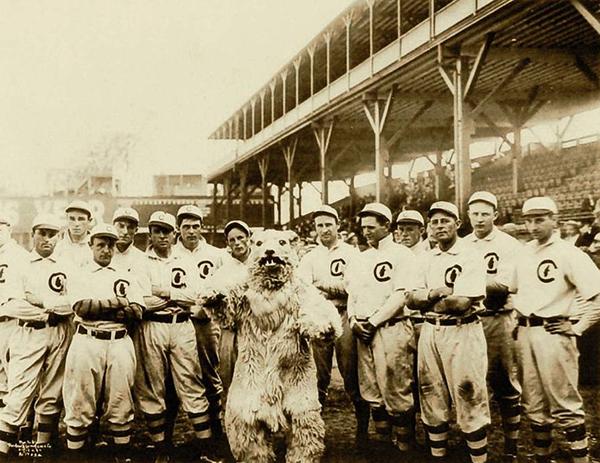 1908 Chicago Cubs Team Photo