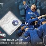 539 Toronto Blue Jays Relic /49