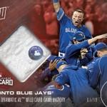 539 Toronto Blue Jays Relic /10