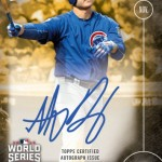 652 Anthony Rizzo Autograph 1/1