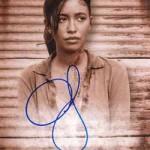 2017 Topps Walking Dead Season 6 Autograph Sepia