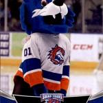 2016-17 UD AHL Mascots Storm