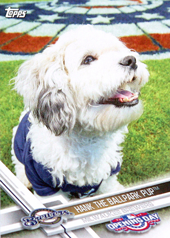 2017 TOD Mascots M-21 Hank the Ballpark Pup