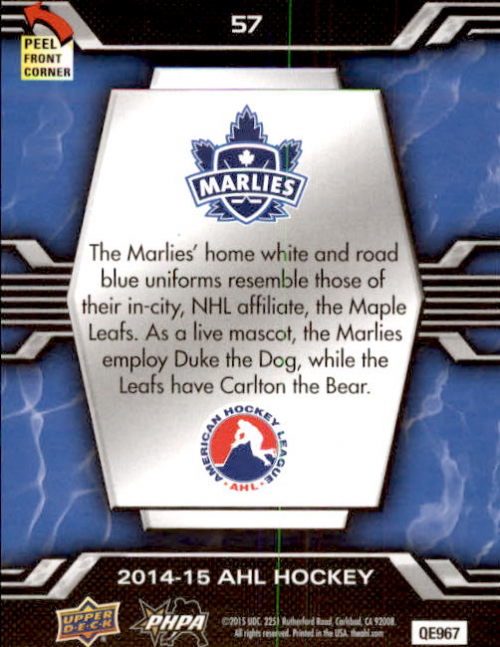 2014-15-Upper-Deck-AHL-Hk-039-s-Logo-Stickers-You-Pick-Buy-10-cards-FREE-SHIP thumbnail 111