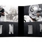 2012-playbook-football-mcfadden