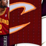 2012-13-immaculate-basketball-insignias-2