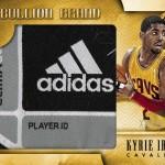 2013-14-gold-standard-basketball-irving