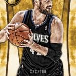 2013-14-gold-standard-basketball-love