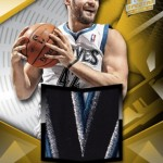 panini-america-2013-14-spectra-basketball-love