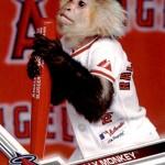 2017 Topps Opening Day Mascots Rally Monkey