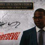 2018 Upper Deck Daredevil Seasons 1 and 2 Autographs Stephen Rider