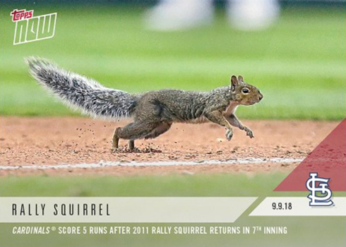 2018 Topps Now Baseball 709 Rally Squirrel