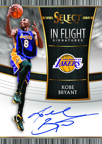 2018-19 Select Basketball In Flight Signatures