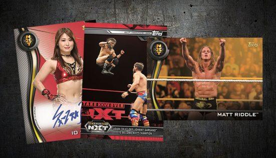 2019 Topps WWE NXT Roster #19 Jessamyn Duke Wrestling Trading Card