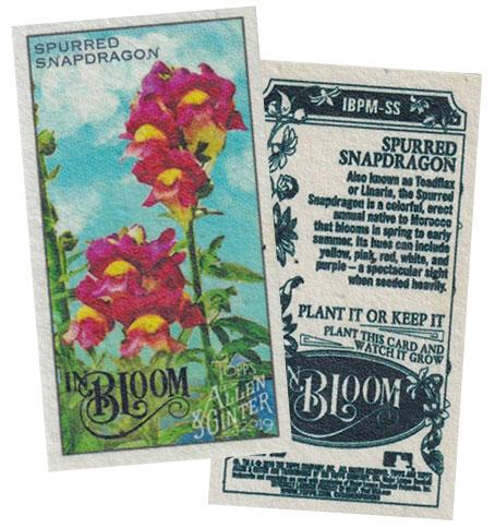 2019-Topps-Allen-&-Ginter-Baseball-In-Bloom-Plant-Me