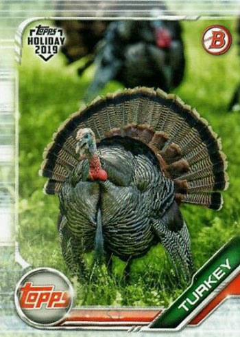 2019 Topps Bowman Holiday Turkey