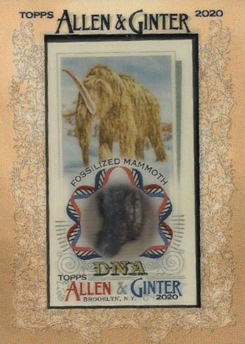 2020 Topps Allen & Ginter Baseball DNA Relic Woolly Mammoth